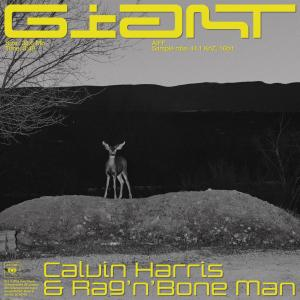 GIant Calvin Harris & Rag n Bone Man promo