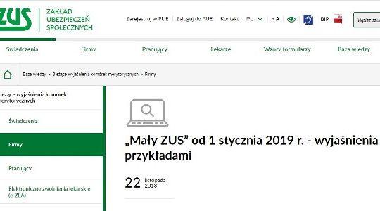 Mały ZUS 2019 DJ